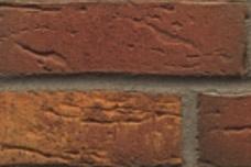 686 Rood-bont geel gevlamd handvorm optiek