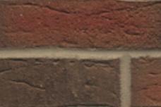 689 Rood-bont gevlamd handvorm optiek