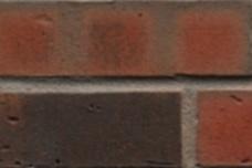 752 Roodbont gevlamd kolenbrand wasserstrich optiek